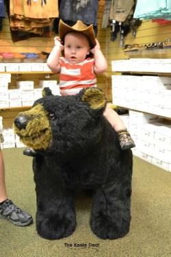Bushkill Falls Indian Museum Bear