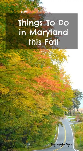 Things To Do in Maryland this Fall