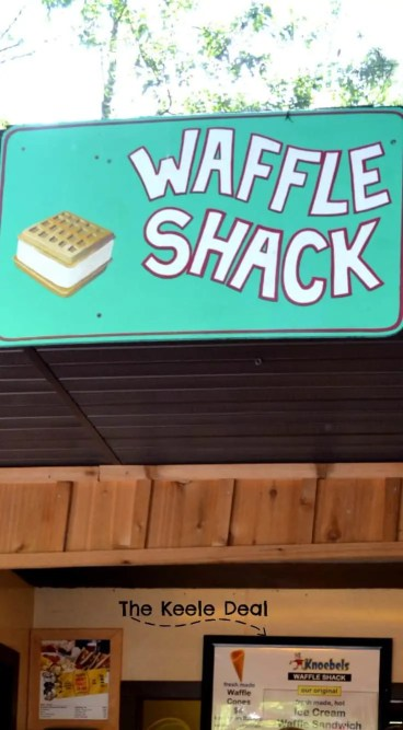 Some of our favorite things to eat at Knoebels include french fries, from the french fry stand; pickles on a stick, and waffle ice cream sandwiches. The BBQ at the Potato Barn is also really good