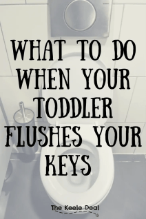 What to do when your toddler flushes your keys down the toilet. A step-by-step guide of what we did when our keys took a flush. thekeeledeal.com