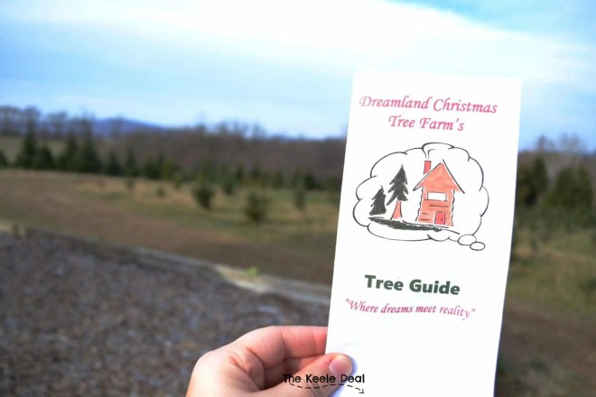 Dreamland Christmas Tree Farm a great place to cut your own Christmas tree. We had a great time exploring the farm and getting to cut our own Christmas Tree. #Christmas #Maryland #Christmastreefarm #Treefarm #Christmasactivity #Christmastree
