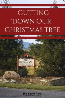 New Tradition - Cutting Down our Christmas Tree. #christmas #christmastreeideas #christmastreefarm #dreamlandchristmastreefarm #maryland #christmasactivities #traditions