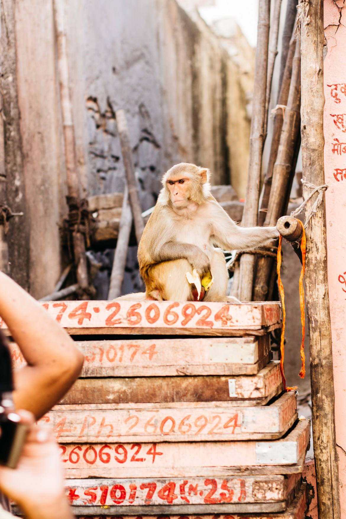 jaipur, india, anchal project, the kentucky gent, india travel blog
