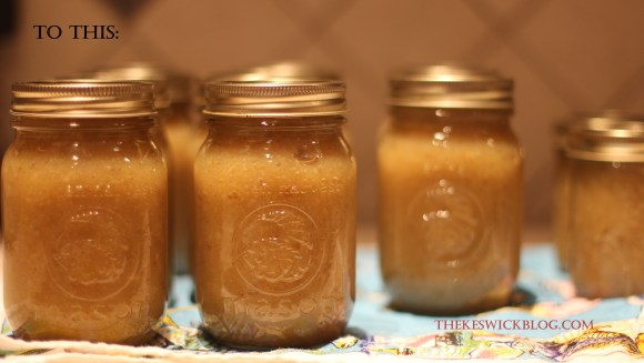 I skipped a few steps in the pictorial, but this was the end result.  Nine pints of lovely applesauce :)