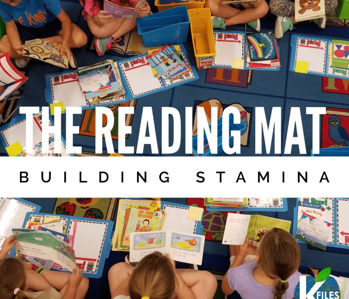 Reader's Workshop: The Reading Mat