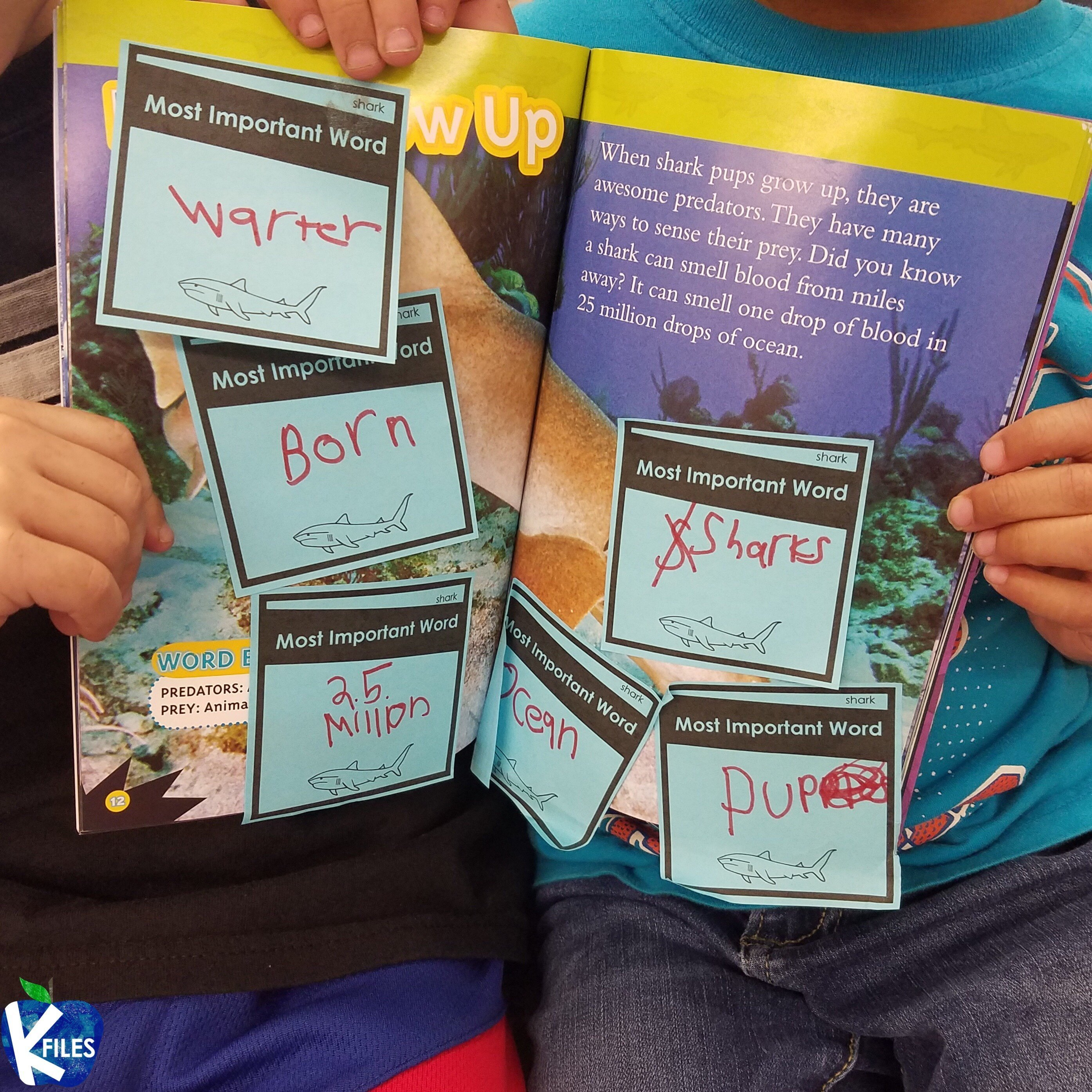 Ocean Life: Nonfiction Reading and Writing Unit (Determine Importance)