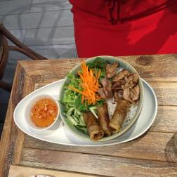 Vermicelli Rice Noodles with Spring Rolls