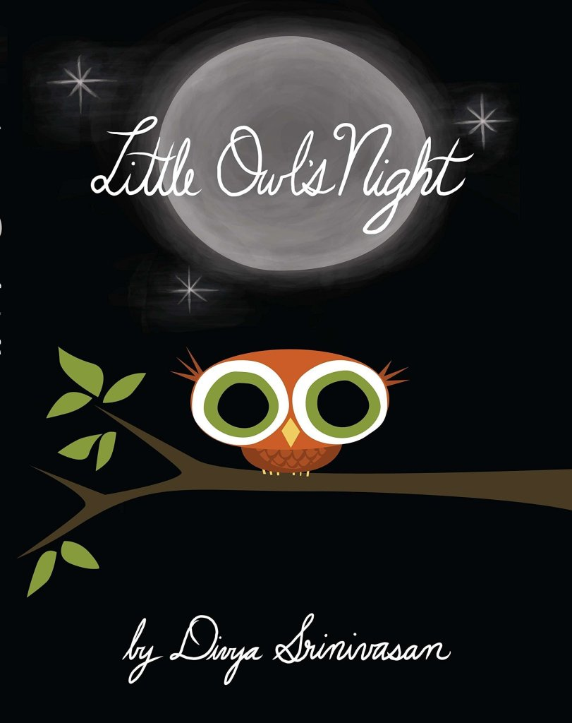 Little Owl's Night Book - Kids book about nature