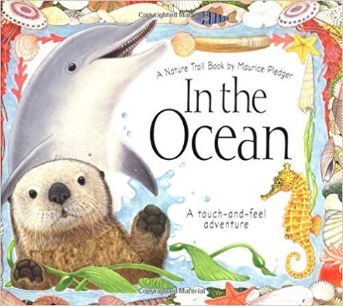 In The Ocean by A.J. Wood - Children's Books about the Ocean