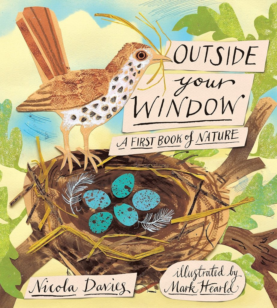 Outside Your Window: A First Book of Nature Book