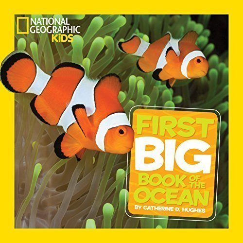 National Geographic Little Kids First Big Book of the Ocean - Children's Books about the Ocean