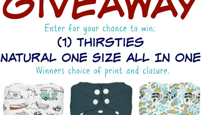 Thirsties Natural One Size AIO Giveaway