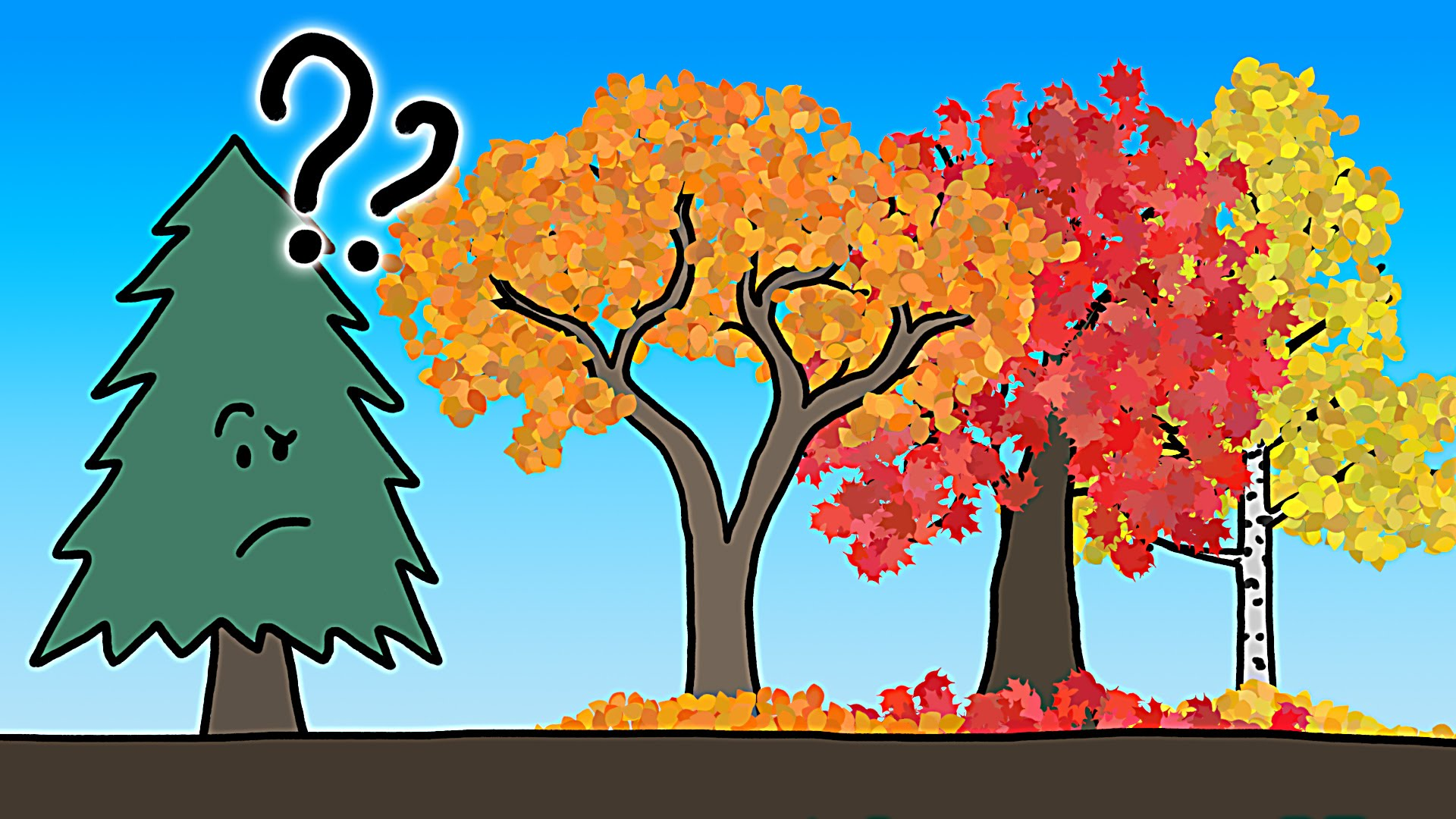 The Real Reason Leaves Change Color In The Fall