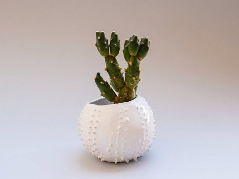 Succulent planter by Olis Cupboard