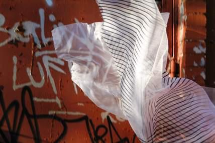 Organic Prints — Dyed Fabric