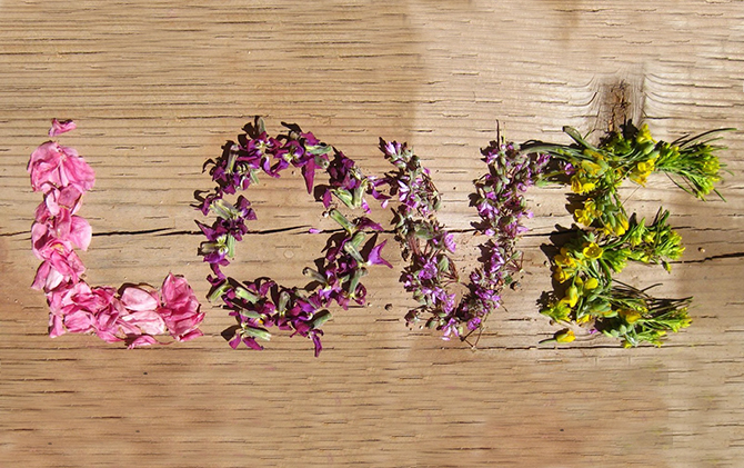 Spring Love: Eco Condoms