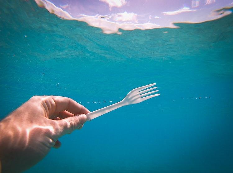 LA Bans Single Use Plastic
