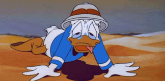 Disney World Style Park in Arizona?   Donald Duck in the Desert