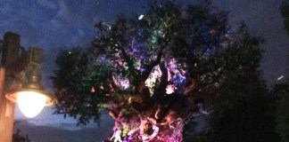 Tree of Life Awakenings in Disney Animal Kingdom Walt Disney World