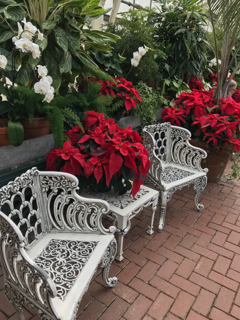 Biltmore at Christmas - The Conservatory with Poinsettias