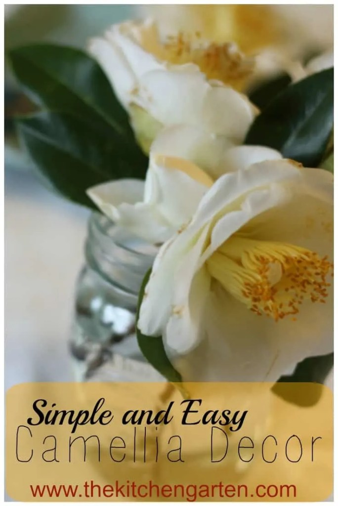 camellia decor