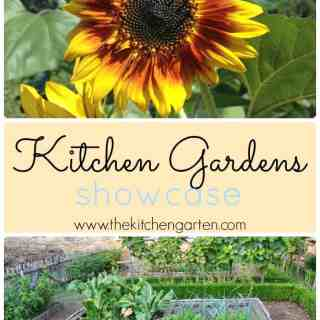 Kitchen Garden Showcase!