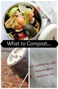 What to Compost (It's so easy!)