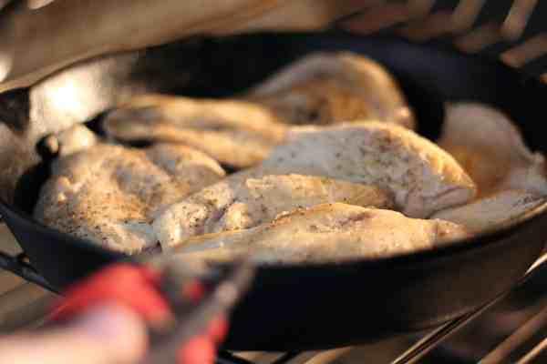 chicken in oven
