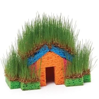 grass sponge house