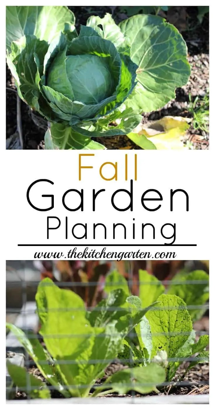 The spring/summer garden is giving up the last of its harvest, and it's time to think about the fall garden. Find out what to grow!
