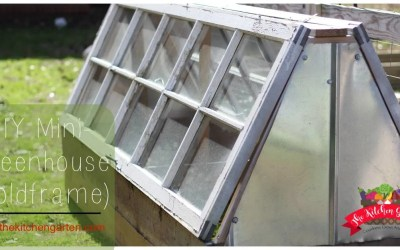DIY Mini Greenhouse (Coldframe)
