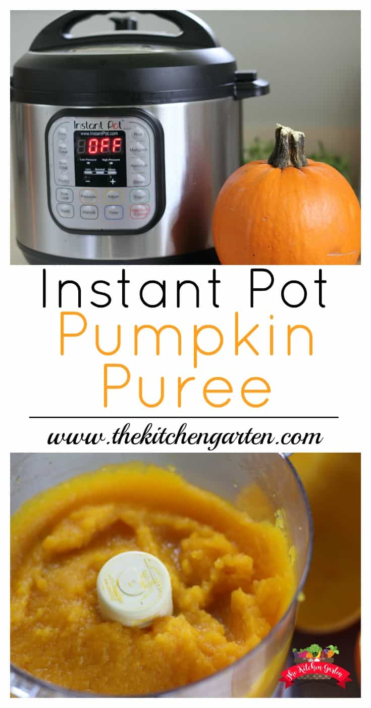 See those cute pie #pumpkins at the store? Turn them into fresh pumpkin puree! Perfect for any recipe, and it takes only 10 minutes in the Instant pot!