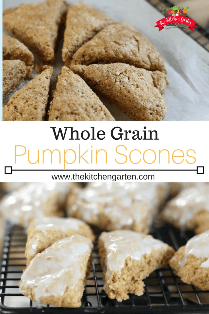 Whole grain pumpkin scones with cinnamon glaze are the perfect quick breakfast or tea time snack. Lightly sweetened and spiced, these are a family favorite!