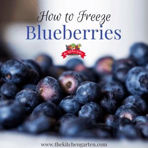 freeze blueberries