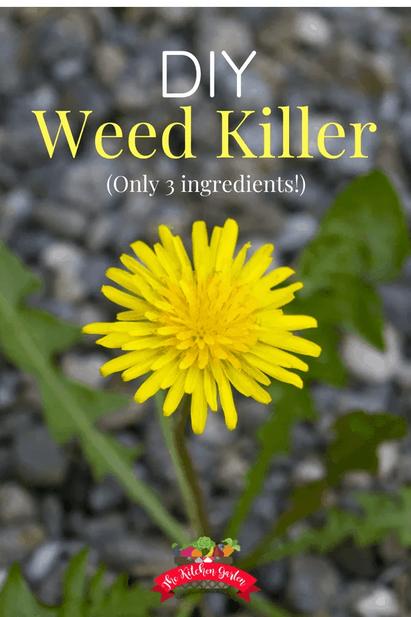 How to Make DIY weed killer