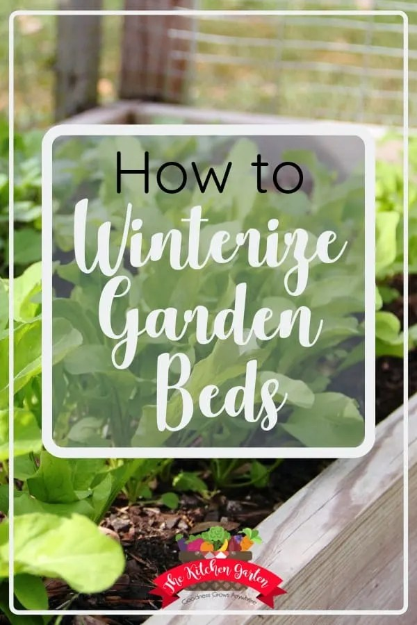 Winterize your garden and help prepare your soil for a successful spring garden. Winterizing the garden is quick and easy!