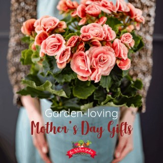 Garden Gift Ideas for Mother's Day