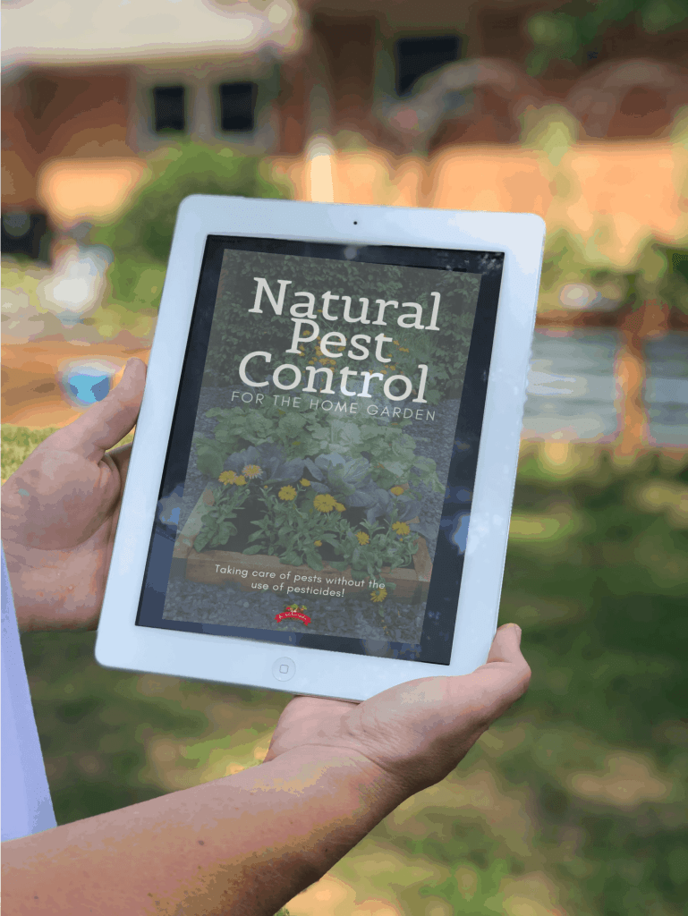 natural pest control ebook in the garden