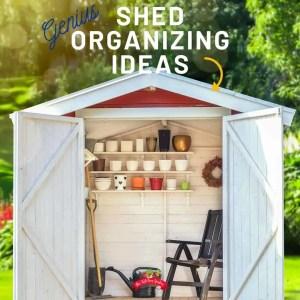 Genius Shed Organization Ideas