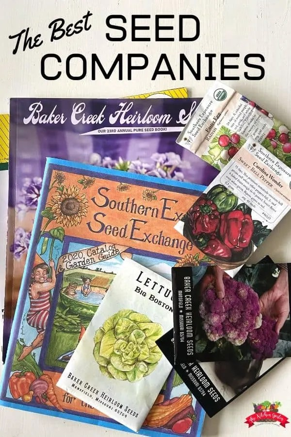 Seed catalogs and seed packets on a white table