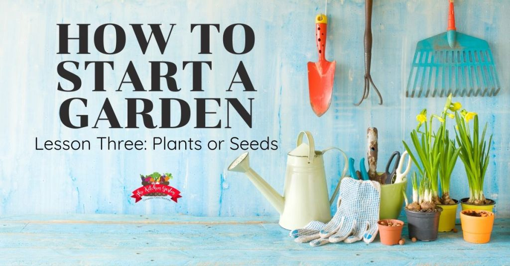 how to start a garden plants or seeds