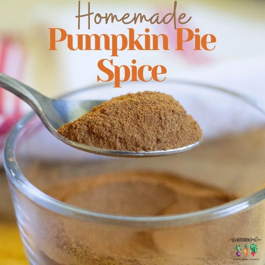 spoonful of pumpkin pie spice
