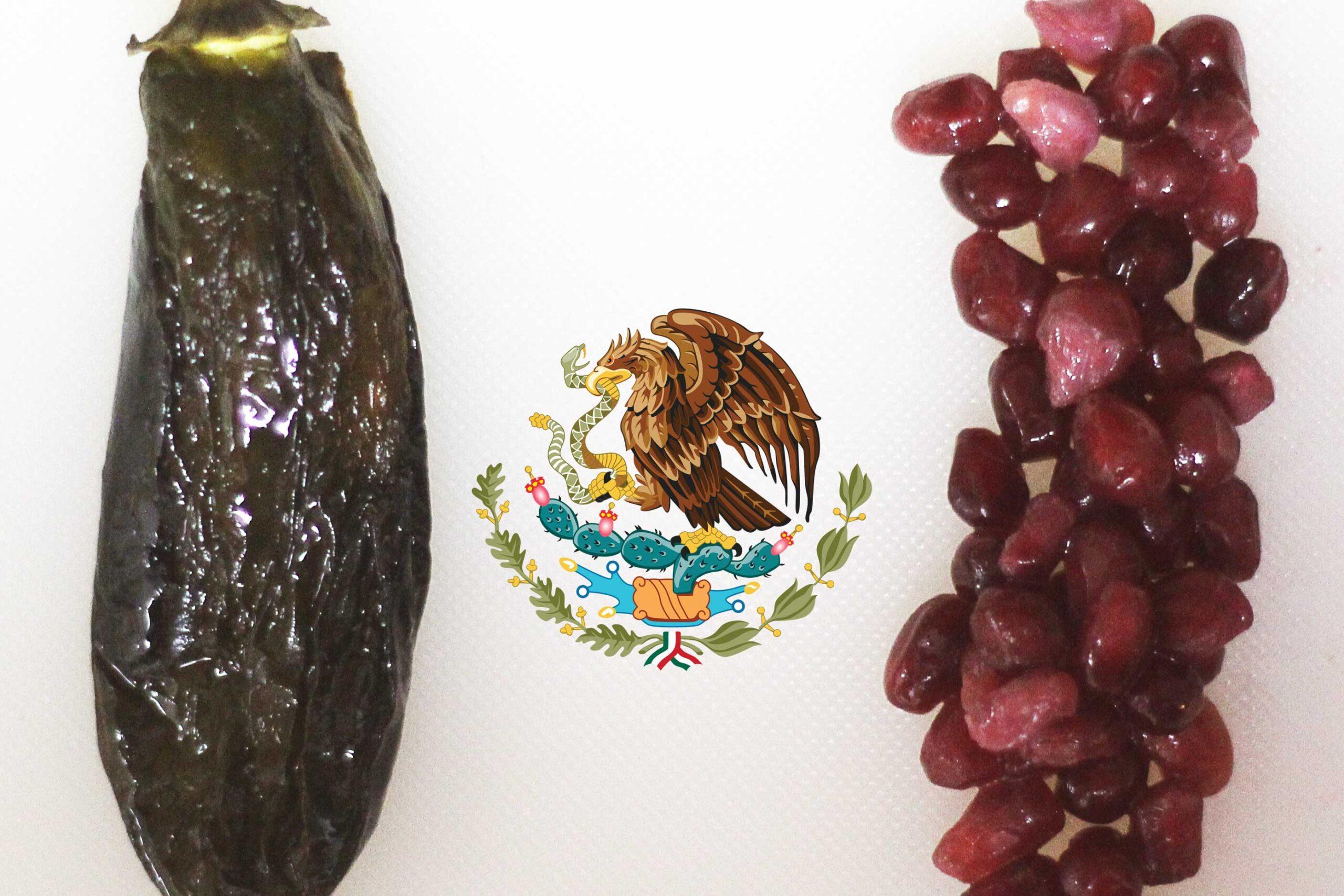 Chiles en Nogada | The Kitchen Gent