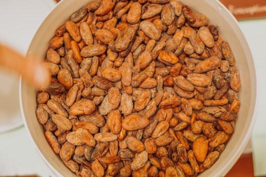 Fèves de cacao fermentées
