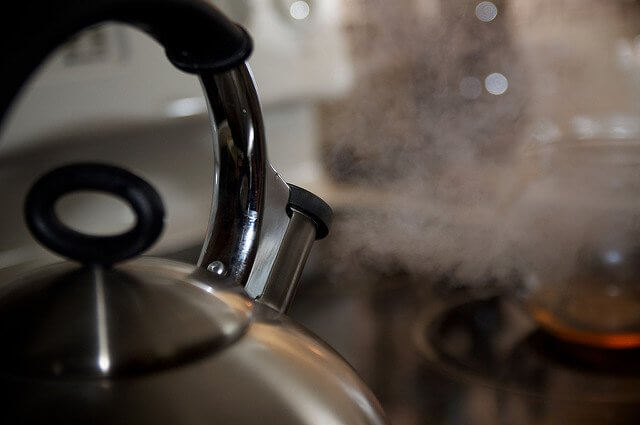 Stainless steel kettles work particularly well on induction stoves.
