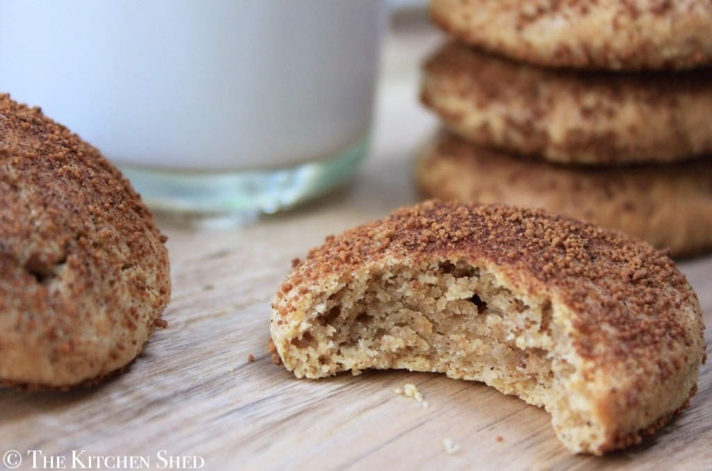 The Kitchen Shed - Clean Eating Snickerdoodle Cookies