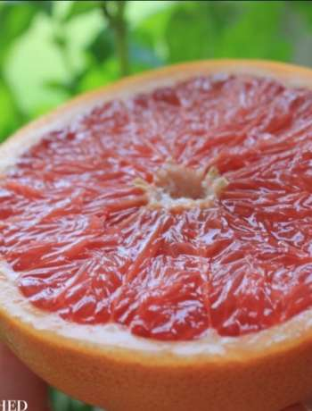 Clean Eating Breakfast Grapefruit 2