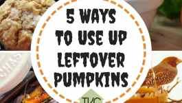 5 Ways To Use Up Leftover Pumpkins 1