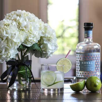 Cucumber Lime Gin and Tonics