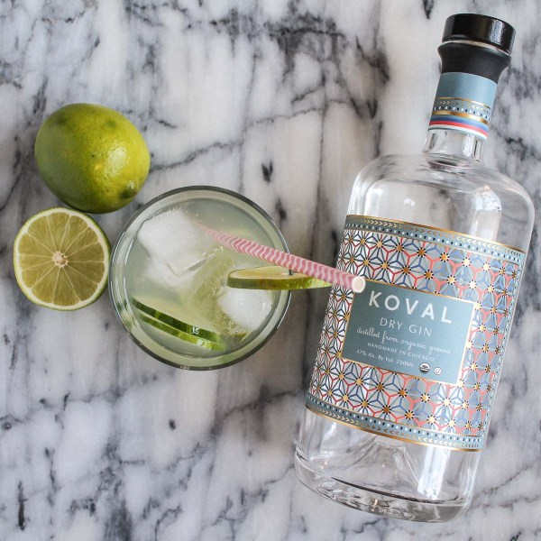 Cucumber Lime Gin and Tonic-4
